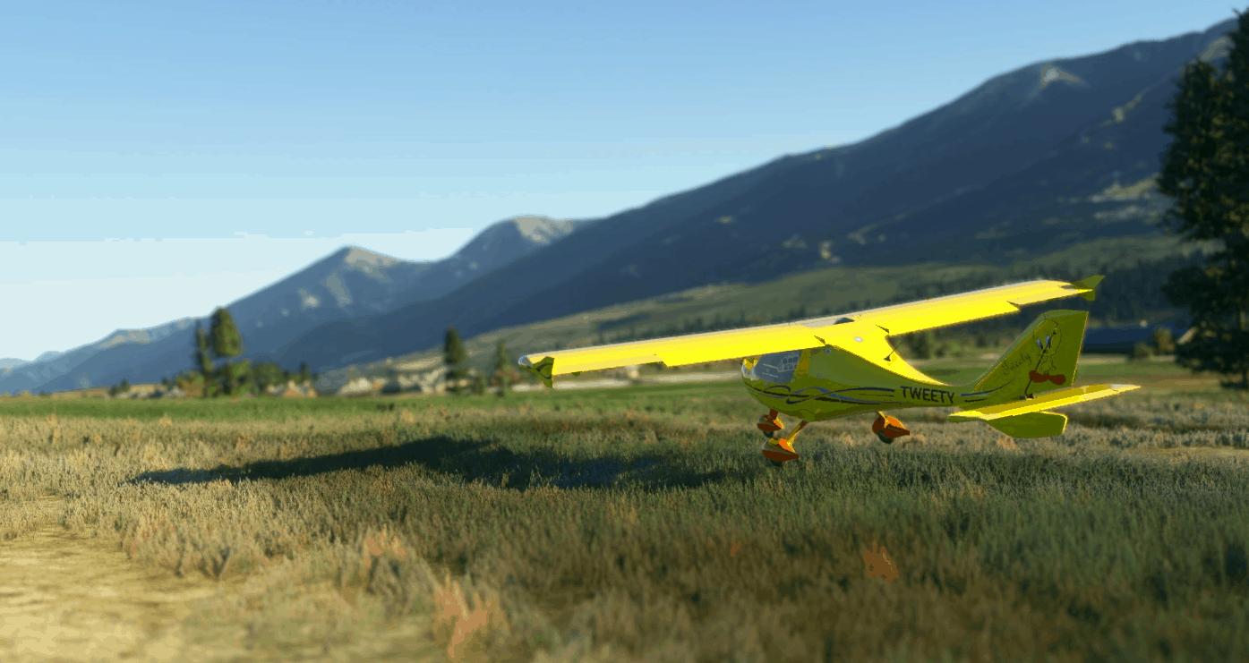 Flight Design CTSL Tweety v1.0 - MSFS2020 Liveries Mod
